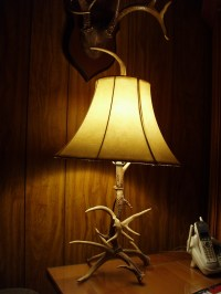 Deer antler lamps - 10 tips fot buying | Warisan Lighting