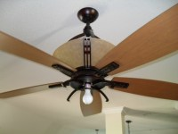 Why Hampton Bay ceiling fan light bulb makes your home ...