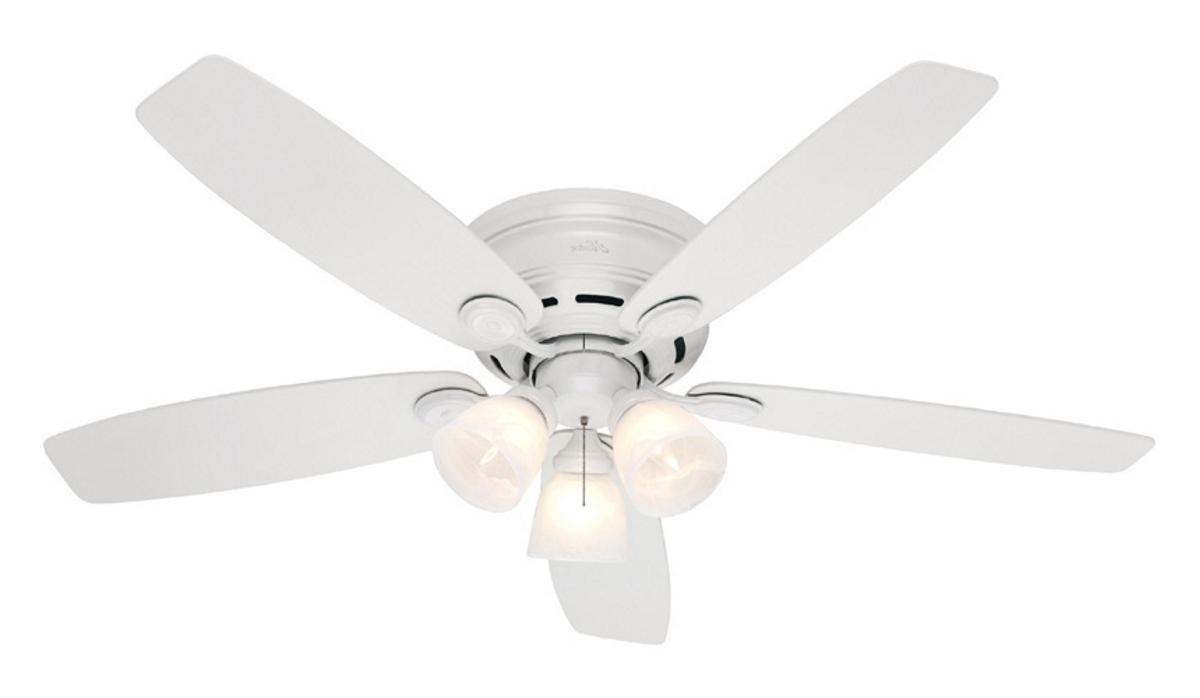 hampton bay led ceiling fan  Roselawnlutheran