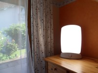 The art technology accompanied with natural light lamps