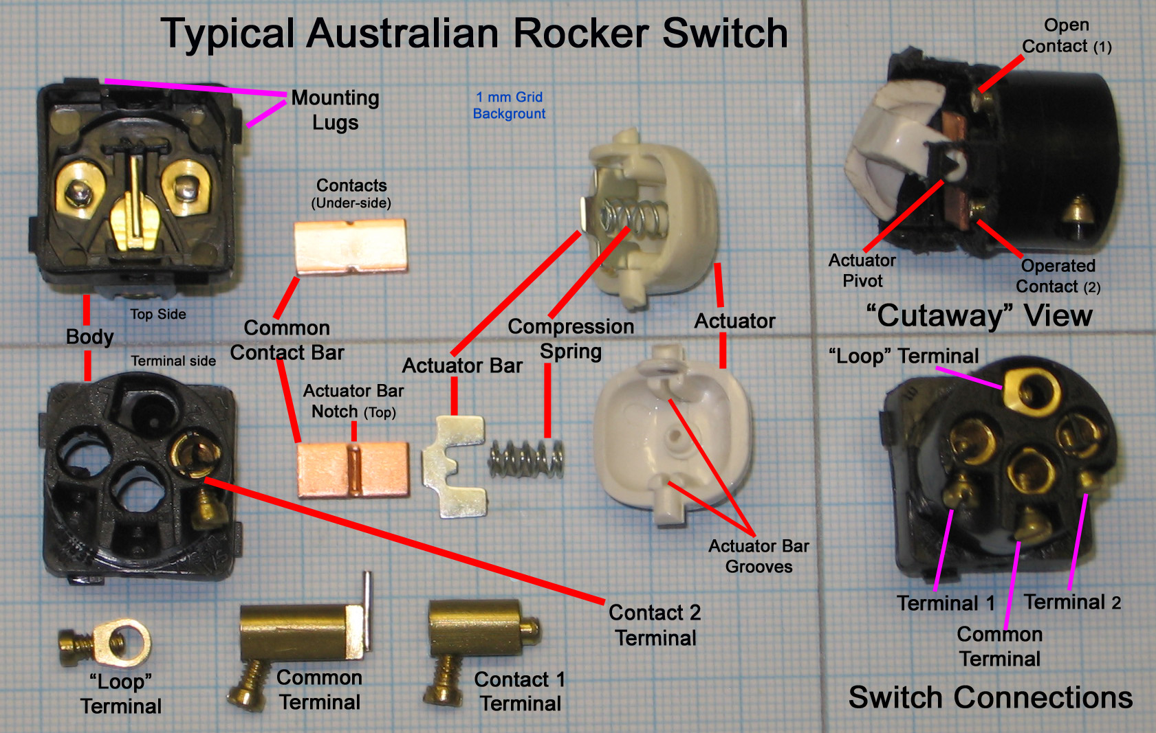 single light switch wiring diagram australia of a microscope and functions its parts wall create mood design for