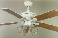 Decorating Your Home using Hampton bay ceiling fan white ...