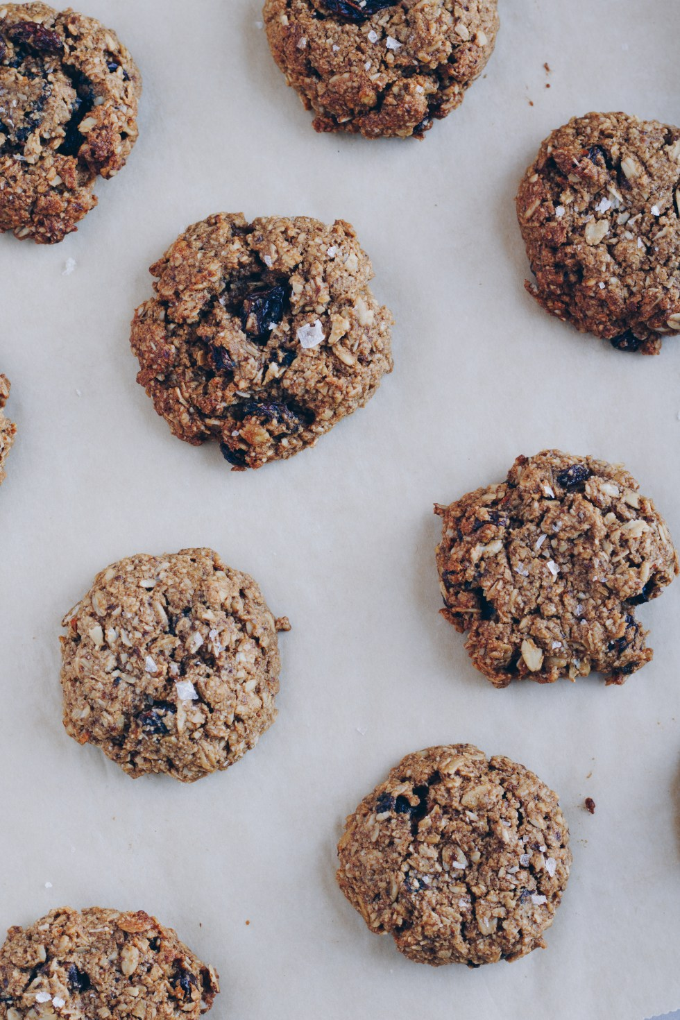 Perfect Oatmeal Raisin Cookies - Vegan + Gluten-Free | warmandrosy.com