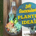 19 Diy Succulent Planter Ideas That Are So Cool You Won T Want To Miss