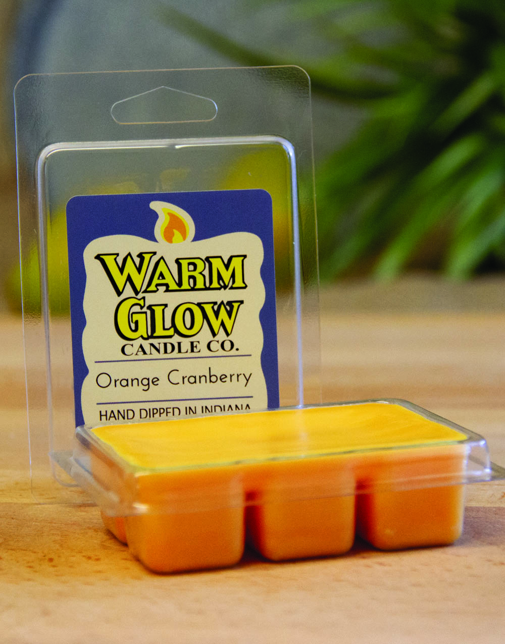 Orange-Cranberry wax melts