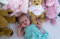 Newborn baby girl and soft toys photographed by Anna Hindocha/Warm Glow Photo
