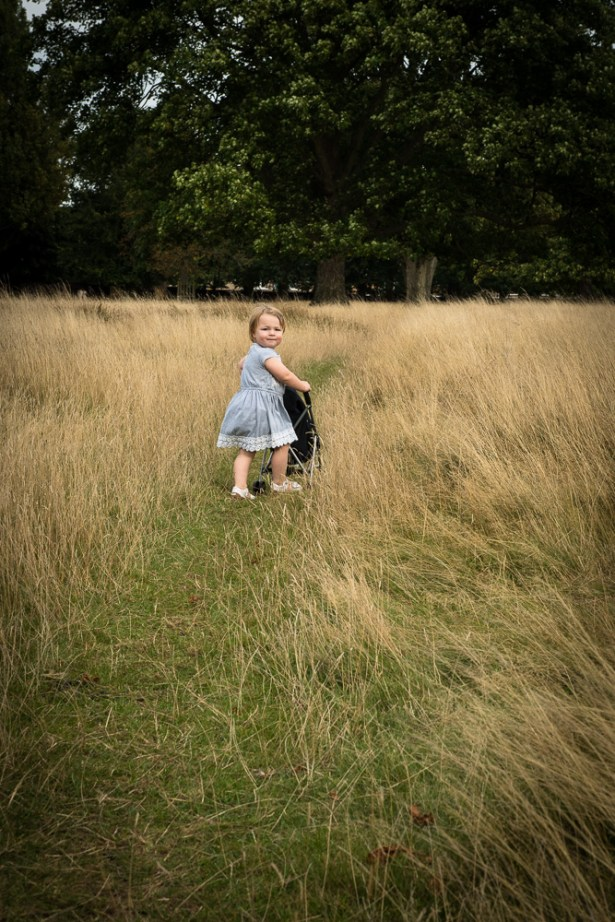 Toddler girl in Bushy Park, Teddington in autumn photographed by Anna Hindocha/Warm Glow Photo