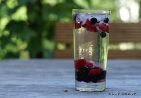Früchte im Glas 4