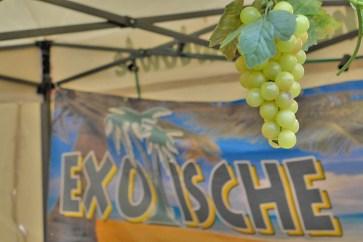 Exotische Weintrauben?