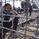 Young Muslim Refugee men, rapists, jihadists, character in question!