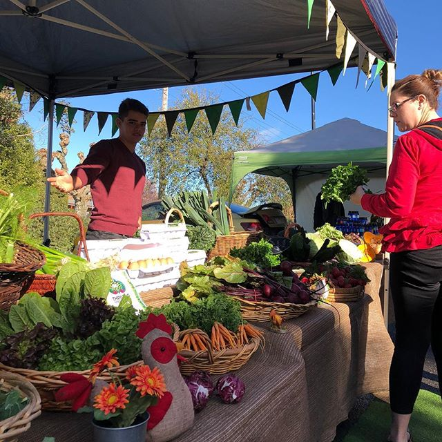 The sun is shining, it's a beautiful morning at the market and @thrivingfoodsfarm have loads of fresh veg for dinner! What's on your menu tonight?