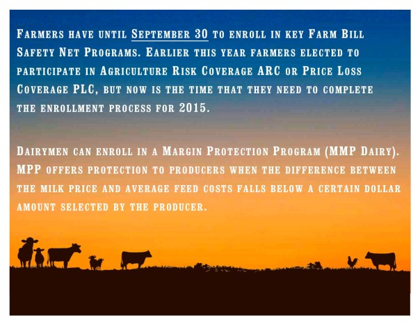 Farm Service Agency Deadlines