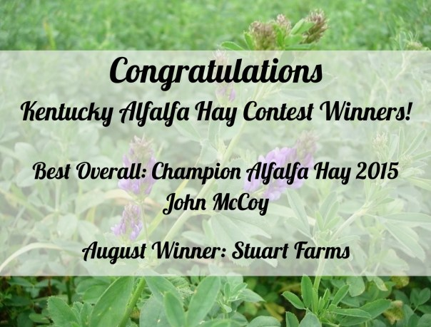 Alfalfa Hay Contest Winners