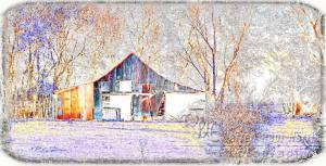 Vivid Barn Violet Grass