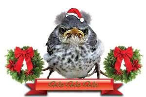Winston - HO HO HO Merry Christmas!