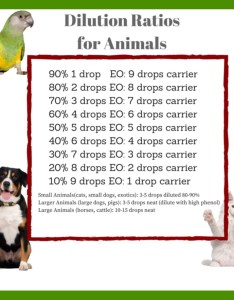 Brown white chest dog cat green yellow bird dilution ratios chart also essential oils professional pet sitting care rh warrensburgpetsitting
