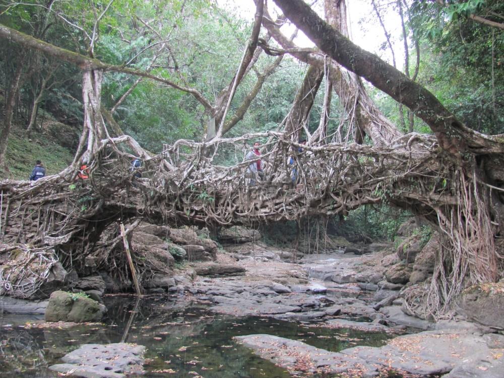 Assam – Meghalaya trip Part 2 (5/6)