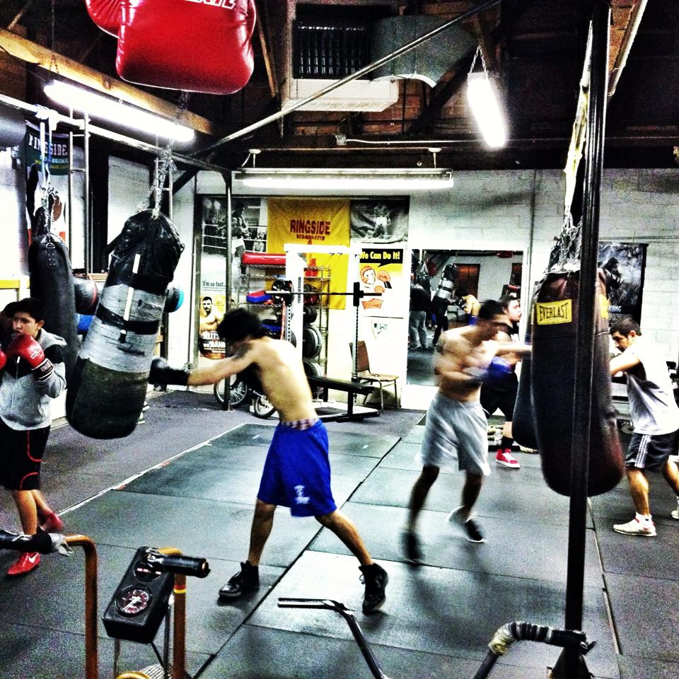 What to expect from beginner boxing classes warrior punch for Punch com