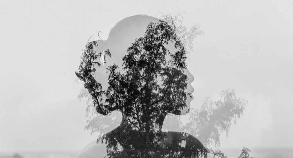 silhouette of asian woman behind tree branch near endless ocean