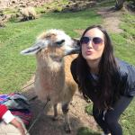 Jordan Haines and her new best friend, Albert the Alpaca.