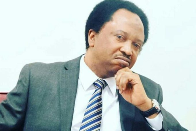 """""""It appears ladies have more uncles than guys"""" – Shehu Sani trigger reactions"""