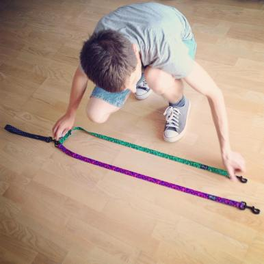 Project: leash for two dogs