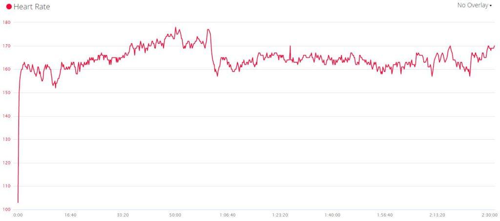 Krynica i wykres pulsu. Widać, że w środku trochę sobie odpuściłem.