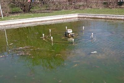 Zanieczyszczenia w Parku Szymańskiego