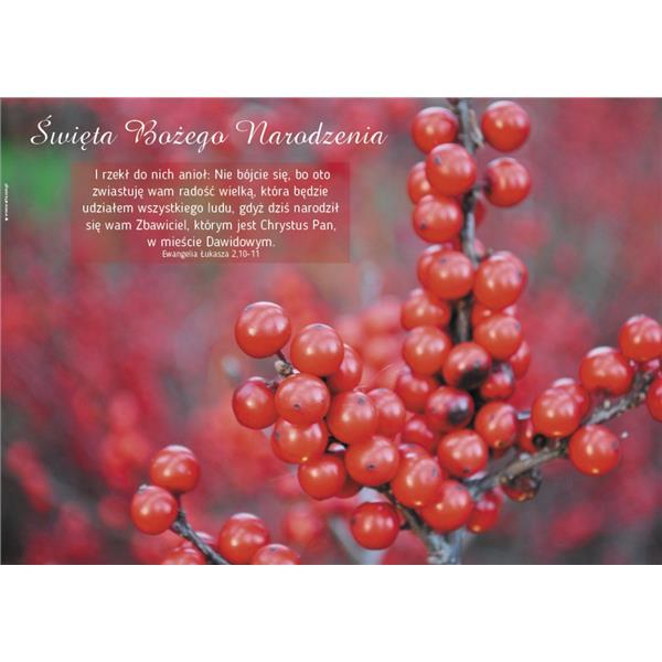 Plakat Boże Narodzenie 2017 - czerwone owoce