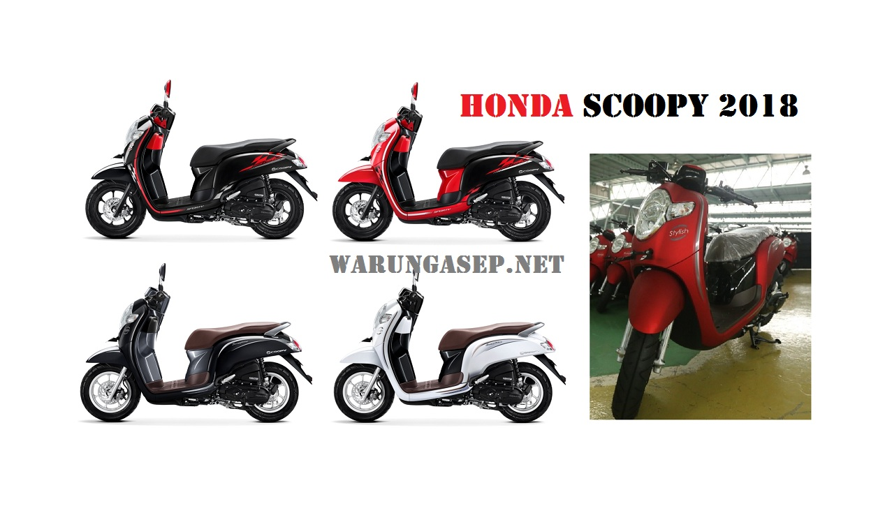 scoopy 2018