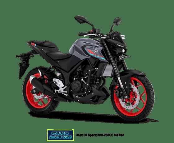 Yamaha MT25 2021 dARK GREY