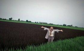 sawah padi black madras,padi black madras,black madras rice,benih padi black madras,harga benih padi black madras,kelebihan benih padi black madras