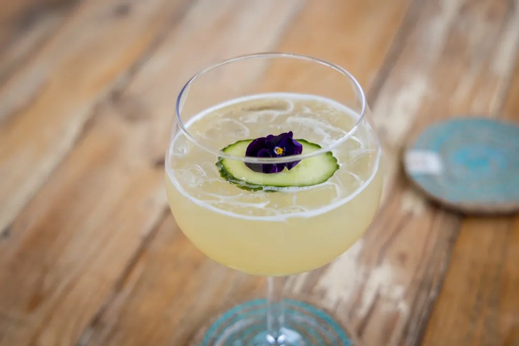 Cocktail with ice, cucumber and edible flower