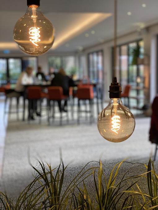 Lightbulbs illuminating plants in open workspace
