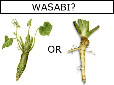 Comparison picture of Genuine Wasabi and Fake Wasabi (Horseradish). Get The Wasabi List to find out what is Genuine and what is Fake.