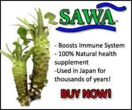 Buy SAWA 100% Pure Wasabia japonica rhizome capsules her
