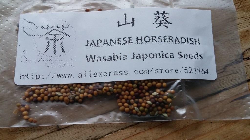 wasabi-packet