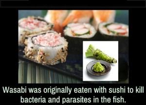 Wasabi, bacterie, Japan, parasieten, sushi