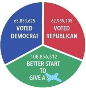 2016 US voting statistic