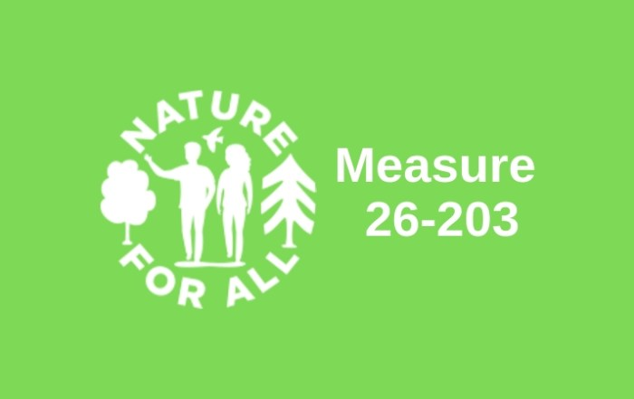 2019-Measure 26-203 with logo