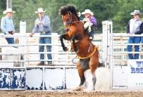 Saddle bronc rider Chance Masters Saturday night