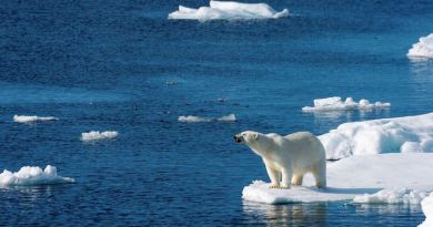 Donald Trump's $10 trillion climate mistake