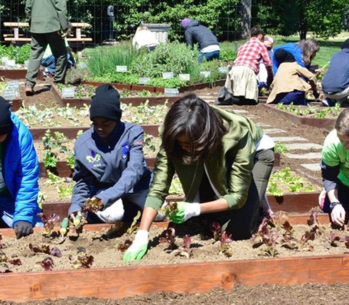 Students invited from Washburn, Wisconsin, Cortez, Colorado, New Orleans, Louisiana and the District of Columbia help First Lady Michelle Obama plant the White House Kitchen Garden Tuesday, April 5, 2016. /Photo by Travis Riddick @actor_tr