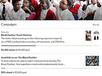 A GoFundMe advertisement for the Black Panther initiative (Courtesy photo)