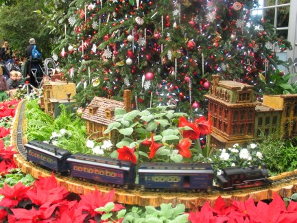 botanic-gardens-train-display