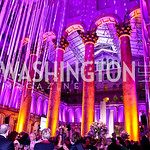 Photo by Tony Powell. Interior. Charity Works Dream Ball. National Building Museum. October 2, 2010