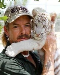 Hold A Tiger : tiger, Captive, Tigers, Bought, America, Washington
