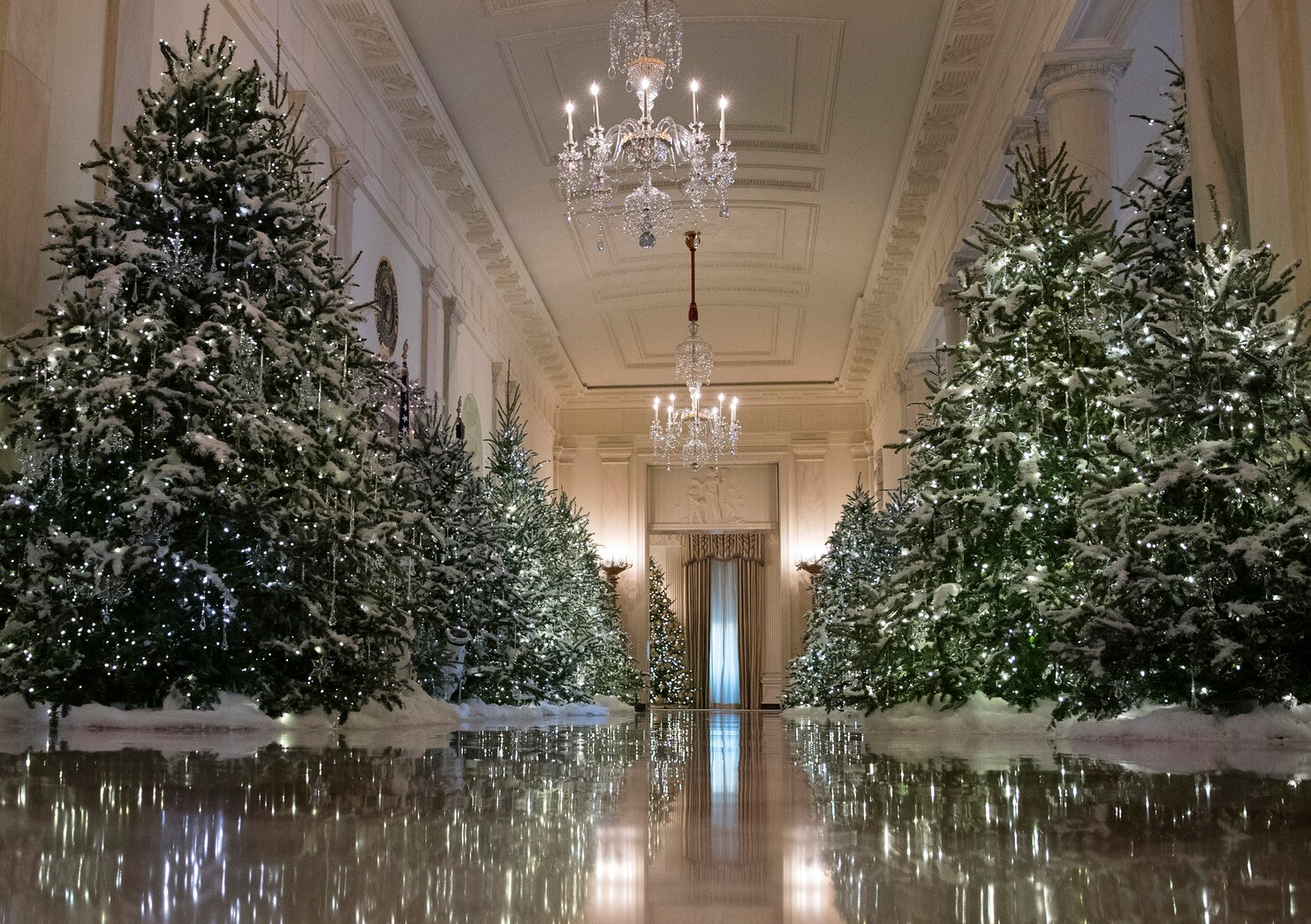 White House Christmas 2019.White House Christmas Tree Lighting 2017 Vs 2016