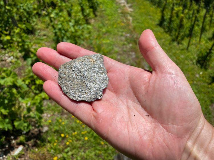 When Stones Speak: The Wines of Domaine des Ardoisiers