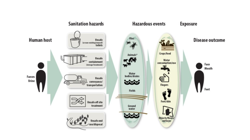 medium resolution of a diagram from who s first ever sanitation and health guidelines illustrates the multiple